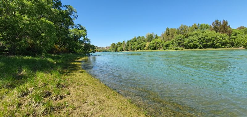 Clutha River next to Pinders Pond