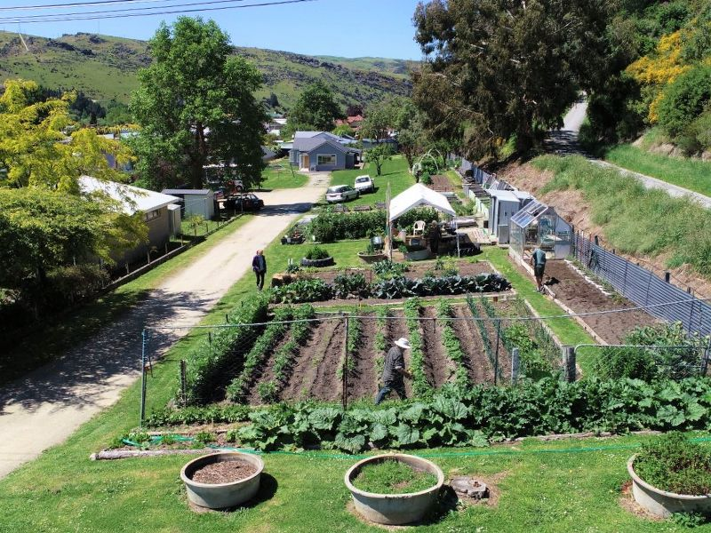 Volunteer Market Garden in Roxburgh - drone view - Copyright to Roxburgh Guide